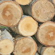 Stock Photo: Background of sawn birch timber