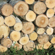 Stock Photo: Stack of sawn birch timber