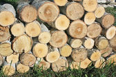 Stack of sawn birch timber — Stock Photo