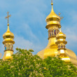 Orthodox Domes - Stock Photo