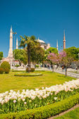 Sultan Ahmet Mosque in Istanbul — Stock Photo