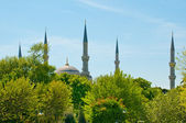 Turkish minarets — Foto de Stock