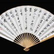 Chinese folding paper fan — Stock Photo