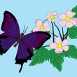 Butterfly and flowers. vector — Stock vektor