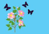 花と蝶。ベクトル. — ストックベクタ