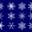 Vector set of snowflakes. — Stock Vector #3719869