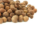 Allspice - pimento - on white background — Stock Photo