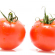 Two red tomatoes — Stock Photo #2742369