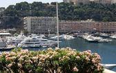 Harbor at Monte Carlo, Monaco — Stock Photo