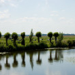 Stock Photo: Dutch landscape