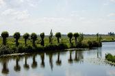 Holländische landschaft — Stockfoto