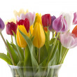 Colorful Dutch tulips in vase — Stock Photo #2999169