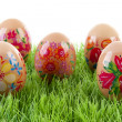 Decorated chicken eggs in grass — Stock Photo #2999222