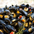 Boiled mussels with vegetalbles — Stock Photo
