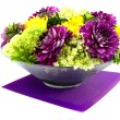 Bowl with dahlia arrangement - Stock Photo