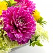Bowl with dahlia arrangement — Stock Photo