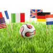 Flags and ball on soccer field — Stock Photo #3042409
