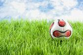 Fußball auf rasen — Stockfoto
