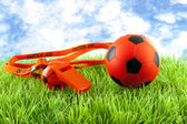 Orange soccer ball and flute on grass — Stock Photo