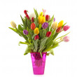 Colorul Dutch tulips in pink vase — Stock Photo