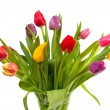 Stock Photo: Bouquet of Dutch tulips