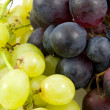 Clusters of grapes in closeup — Stock Photo