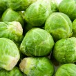 Brussels sprouts - 图库照片