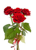 Bouquet of red roses with ribbon — Foto de Stock