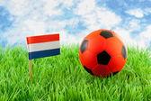 Orange ball and Dutch flag on soccer field — Stock Photo