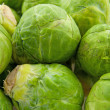 Royalty-Free Stock Photo: Brussels sprouts in closeup