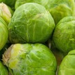 Brussels sprouts in closeup — Stock Photo #3354351