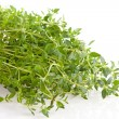Stock Photo: Fresh thyme herb in closeup