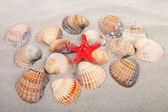 пляж с орудий и красная звезда — Стоковое фото