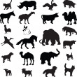 Royalty-Free Stock Vector Image: Animal silhouette vector