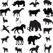Animal silhouette vector - Stock Vector