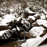 Winter — Stock Photo #3717928