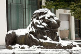 Lion statue — Stock Photo