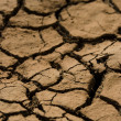 Stock Photo: Dry red soil