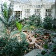 Atrium at resort hotel — 图库照片 #2900368