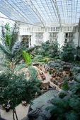 在度假村酒店中庭 — 图库照片