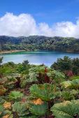 Gorgeous Lake — Stock Photo