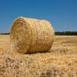 Golden Hay Bales in the countryside — Stock Photo #2702826