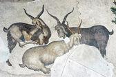Pastoral scene, mosaic, Istanbul — Stock Photo