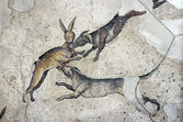 Dogs catching a rabbit, mosaic, Istanbul — Stock Photo
