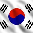 Flag of South Korea — Stock Photo