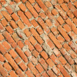 Red bricks wall — Stock Photo #3467426