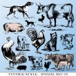 animales de granja — Vector de stock #3573512