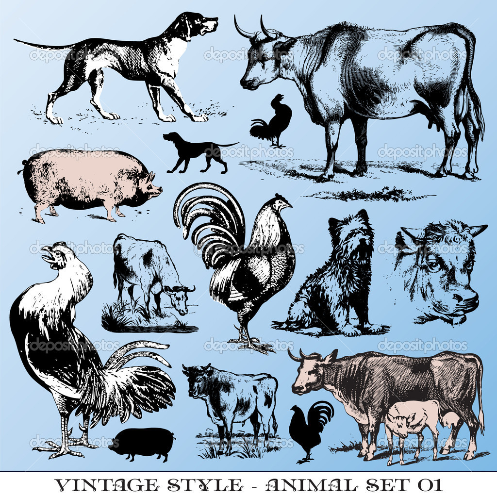 Various Vintage-style illustrations  - farm animals set  Stock Vector #3573512