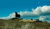 Bulls sign in a Spanish landscape — Stock Photo