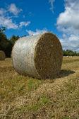 Hay bale — Fotografia Stock